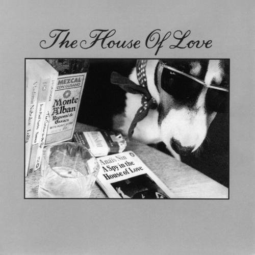 HOUSEOFLOVE - A Spy In THe House OF Love
