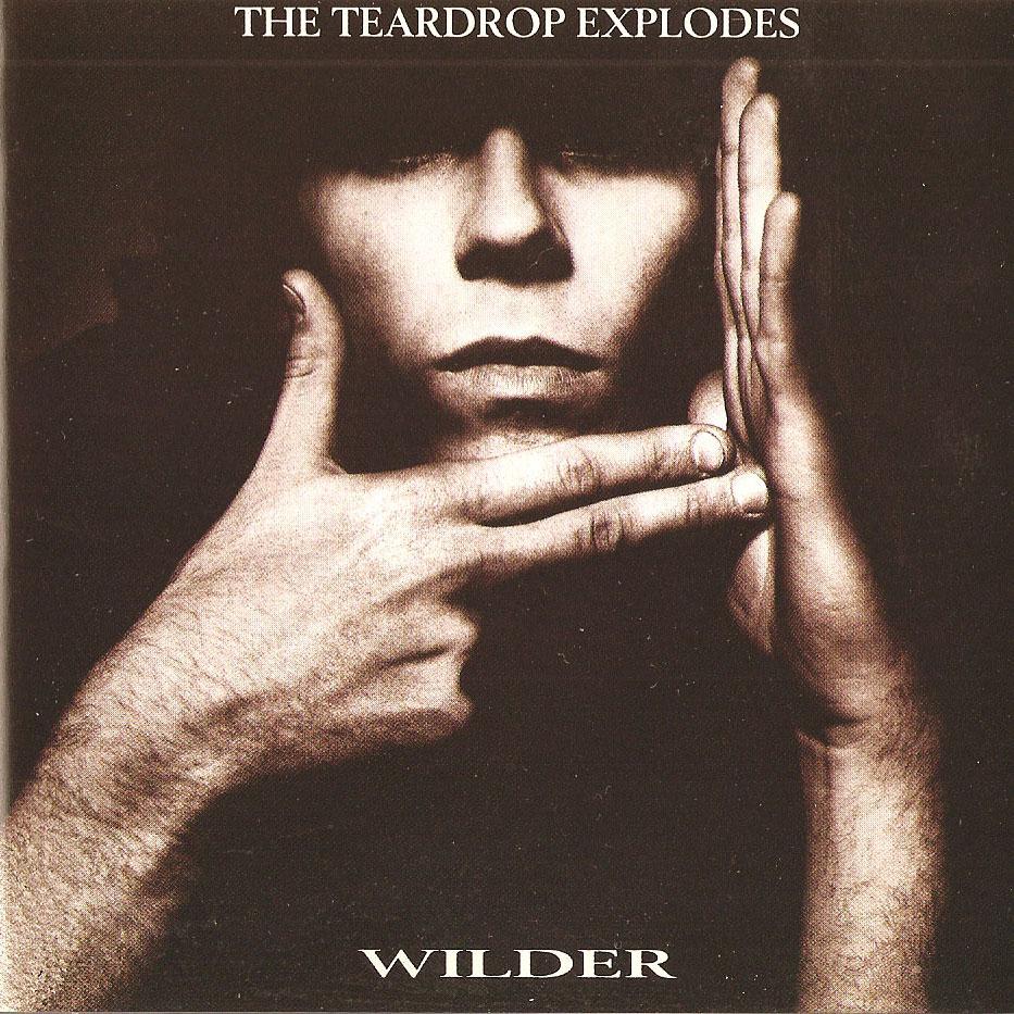 Teardrop-Explodes-_-Wil